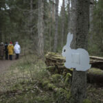 Metsas jälgi loodust mitte Instagrami ehk 5 soovitust matkahuvilisele